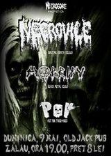 Concert Necrovile, Horrify si POV in Old Jack Pub din Zalau