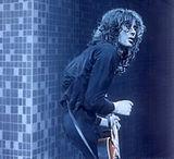 Cumpara portrete cu Jimmy Page si Brian May