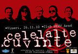 Concert Celelalte Cuvinte in club Nerv din Arad