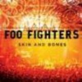 Cronica Foo Fighters - Skin and bones