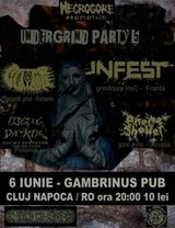 Undergrind Party 5 in Gambrinus Pub din Cluj