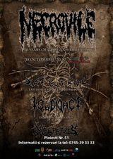 Concert aniversar Necrovile in Cluj-Napoca