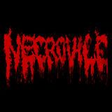 Necrovile