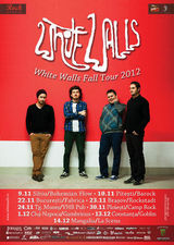 White Walls: Concert la Constanta in club Goblin