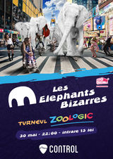 Concert Les Elephants Bizzares in Club Control din Bucuresti
