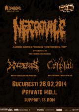 Lansarea noului album Necrovile