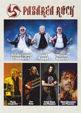 Pasarea Rock - concert in Timisoara