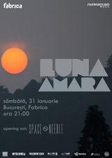 Concert Luna Amara pe 31 Ianuarie la Bucuresti, in Fabrica