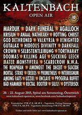 Kaltenbach Open Air 20-22 August 2015