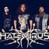 Hate Virus Metal band