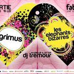 Concert Grimus si Les Elephant Bizarres in club Fabrica