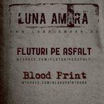 Concert Luna Amara in Irish & Music Pub, Cluj