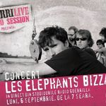 Concert Les Elephants Bizzares, in direct, din Studiourile Radio Guerrilla