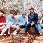 Se lucreaza la un film biografic The Beach Boys