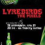 Cine sunt Lyrebirds?