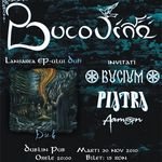 Concert Bucovina in Dublin Pub din Iasi