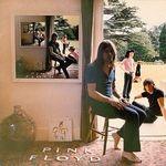Pink Floyd s-ar putea reuni in viitor