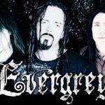 Evergrey lanseaza o aplicatie pentru iPhone