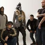 Limp Bizkit au lansat un nou videoclip: Gold Cobra