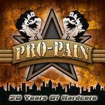 Pro-Pain sustin trei concerte in Romania