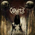 Filmari cu Carnifex in California
