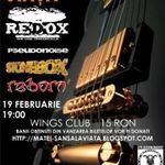 Concert Reborn, Redox, Pseudonoise si Stonebox pentru Matei in Wings