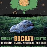 Concert acustic BUCIUM la Muzeul Taranului Roman
