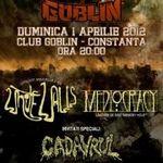 Concert aniversar WHITE WALLS in Goblin Constanta