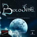 Concert Bucovina si In Defiance la Oradea