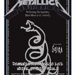 Filmari cu Metallica in Italia