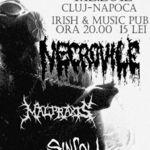 Concert Necrovile in Cluj-Napoca - 4 decembrie 2012