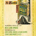 Nick Fagadar de la Luna Amara lanseaza un album solo sub numele Autumn Hotel