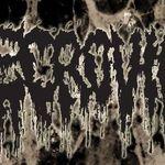 Necrovile: Coperta noului album, facuta de Costin Chioreanu (foto)