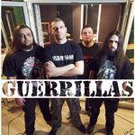 Guerrillas raman fara chitarist