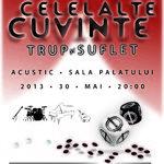 Concertul acustic Celelalte Cuvinte la Bucuresti a fost amanat