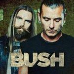 Bush: Filmari HQ cu cele doua piese noi (video)