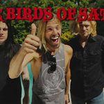 Tobosarul Foo Fighters are un nou proiect cu pasari din patrimoniul lui Satan