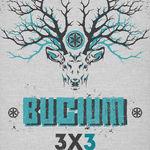 In luna iulie, BUCIUM va sustine noua concerte in Targu Neamt, Ardud si Sighisoara