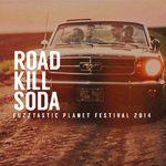 Roadkillsoda , pe scena de la Fuzztastic Planet Festival