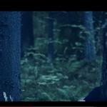 Korpiklaani a lansat un clip pentru piesa Ammanhauta