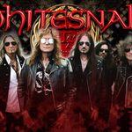 Whitesnake lanseaza un lyric video pentru 'Restless Heart'