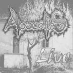 ApocalipS concerteaza in Sannicolau Mare